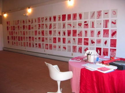 Seeing Red, installation view, Storefront Artist Project